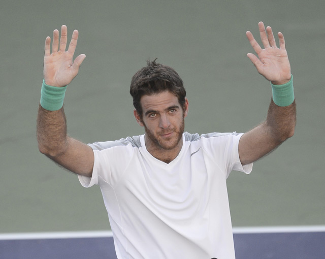 El argentino Juan Martn del Potro dio la vuelta a un vibrante partido y dobleg por 4-6, 6-4 y 6-4 en dos horas y 50 minutos al serbio Novak Djokovic, nmero uno del mundo, para obtener el pase a la final de Indian Wells, primer Masters 1000 de la temporada, donde se medir a Rafa Nadal